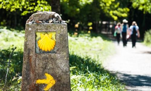 Pilgerreise Jakobsweg
