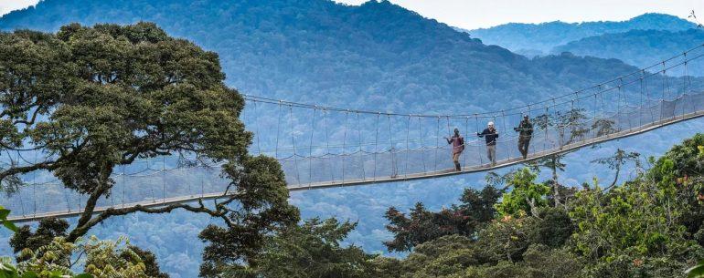 Reiseziel Ruanda